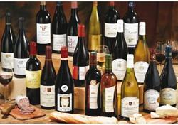 Wijn Terra Viva Merlot Pays Doc Frankrijk