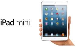 iPad Mini Apple 32GB wifi zwart
