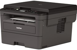 Multifunctional Brother DCP-L2530DW